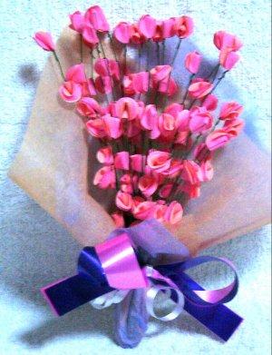 99 peach pink roses