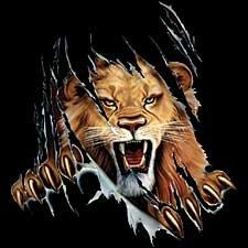 Rip Out Lion