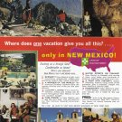 1964 New Mexico Travel Vintage Print Advertisement