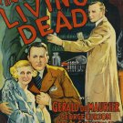 The Living Dead DVD (1933) Rare British Horror