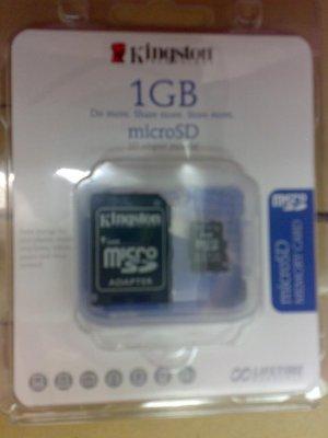 Micro SD (1GB)