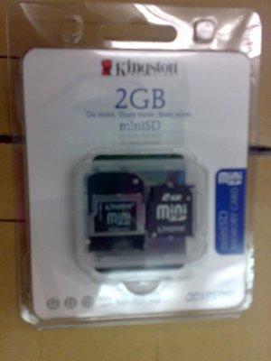 Mini SD (2GB)