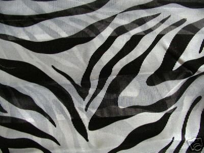 White Animal Zebra Print Scarf