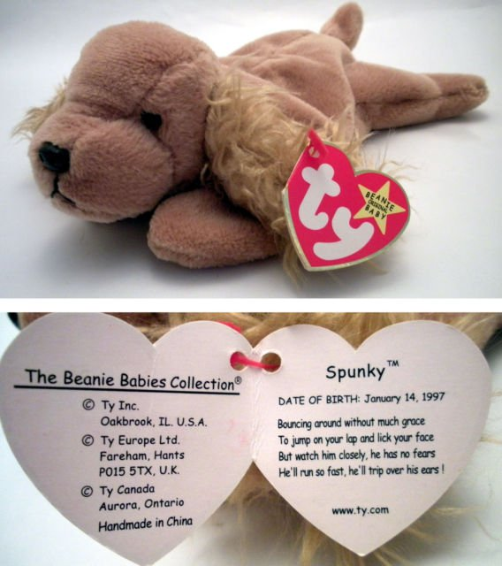 Ty Beanie Baby Spunky the Dog Cocker Spaniel f1f3eac878e
