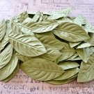 100 pcs of Paper Leaves, Embellishments, Scrapbooks Crafts, Green Leaf, F8