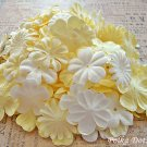200 pcs of Paper Flowers Petals, Embellishments, Scrapbooks, White & Cream Colors, F10