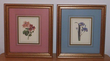 2 PRETTY Flower PICTURES in Frame With Glass 9 x 8