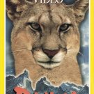 National Geographic Video Puma Lion Of The Andes VHS