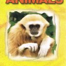 Wild About Animals Video Exotic Animals