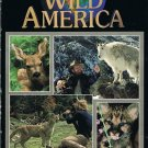Marty Stouffer's Wild America Photographing Wildlife Video