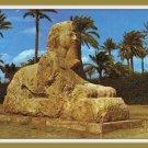 Vintage Postcard Egypt Giza The Sphinx Of Sakkara 1950s