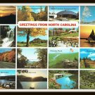 Vintage 80's Postcard Greetings From North Carolina Tar Heel State