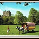 Vintage Postcard 1969 Blarney Castle Ireland