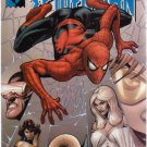 MARVEL KNIGHTS SPIDER-MAN #6