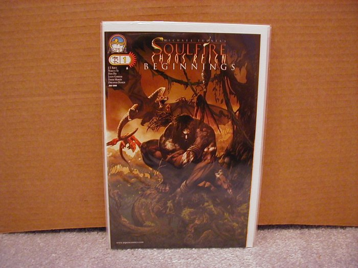 "SOULFIRE CHAOS REIGN BEGINNINGS #1 ""A"" COVER NM"