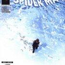 AMAZING SPIDER-MAN #556 NM (2008) BRAND NEW DAY