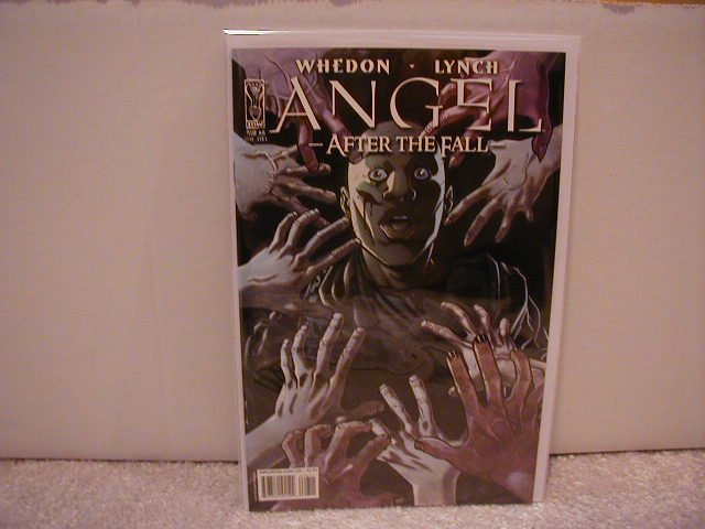 ANGEL AFTER THE FALL #8 �A� COVER NM (2008)