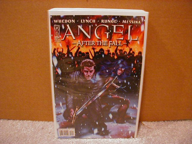 ANGEL AFTER THE FALL #10 CVR �B� (2008)