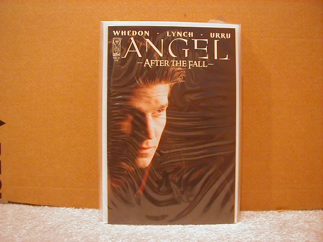 ANGEL AFTER THE FALL #1  NM 2ND PRINT PHOTO COVER