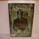 "ANGEL AFTER THE FALL #12 NM(2008) ""B"" COVER"