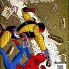 AMAZING SPIDER-MAN #579 NM (2008)