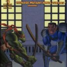 TEENAGE MUTANT NINJA TURTLES VOL 4 #8 *MIRAGE*