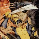 WOLVERINE ORIGINS #40 NM (2009)