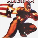 "CAPTAIN AMERICA #601 VF/NM (2009) ""C""  ANNIVERSARY COVER"