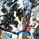 MARVEL ADVENTURES SPIDER-MAN #2 NM (2010)