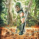 GREEN ARROW #1 (2010) NM *BRIGHTEST DAY*
