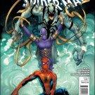 AMAZING SPIDER-MAN #663 NM (2011)