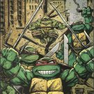 Teenage Mutant Ninja Turtles #4 B Cover (2011)VF/NM