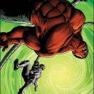Hulk #45 NM (2011)