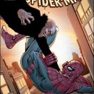 Amazing Spider-Man #675 NM (2011)