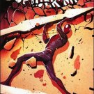 Amazing Spider-Man #679 NM (2012)