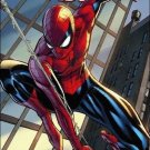 Amazing Spider-Man (2014) #1 J.Scott Campbell connecting cover variant and #1 standard  copy