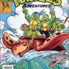 Teenage Mutant Ninja Turtles Adventures #17 [1991] VF/NM Archie Comics