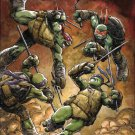 Teenage Mutant Ninja Turtles #60 [2016] VF/NM IDW Comics