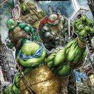 Teenage Mutant Ninja Turtles Universe #1 [2016] VF/NM IDW Comics