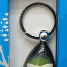Keychain- Shark Tooth in Lucite