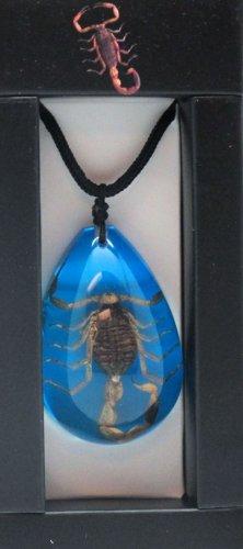 Necklace- Scorpion on Blue Background