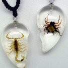 Necklace - 2 Pc. Lucite Scorpion & Spider