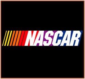 Free Shipping: NASCAR Logo Enamel Italian 9mm Charm