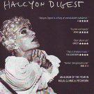 Deer Hunter - Halcyon Digest - rare vintage advert 2010