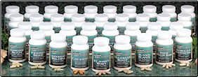 Black Cohosh 421 mg  (#993R)