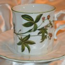 Mikasa Ultra Cream Botany DN002 Cup and Saucer