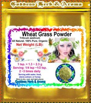Wheat Grass Powder (Triticum aestivum) Organic Grown All Natural - 1 LB