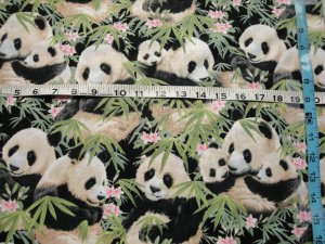ADORABLE PANDA BEARS ON BAMBOO SHOOTS-ELIZABETH STUDIOS-F/Q-QUILTING-SEWING