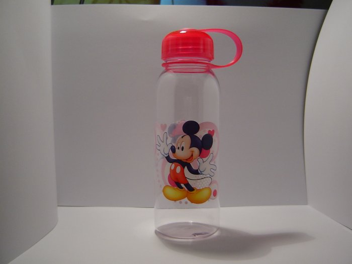 Mickey & Minnie Water Bottle