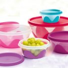 Food Storage Bowls Multicolor Set of 5 With Lids